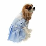 View Image 5 of Dorothy Dog Costume Dress - Blue
