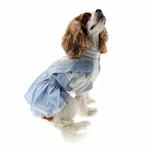 View Image 3 of Dorothy Dog Costume Dress - Blue
