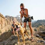 View Image 2 of DoubleBack Dog Harness by RuffWear - Cloudburst Gray