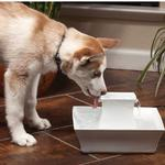 View Image 3 of Drinkwell Pagoda Ceramic Pet Water Fountain by PetSafe - White