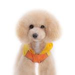 View Image 4 of Duck Dog Raincoat by Dogo - Yellow