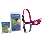 View Image 1 of Easy Walk Nylon Harness by PetSafe - Raspberry/Grey