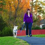 View Image 4 of Easy Walk Nylon Harness by PetSafe - Royal Blue/Navy