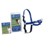 View Image 1 of Easy Walk Nylon Harness by PetSafe - Royal Blue/Navy
