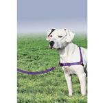 View Image 4 of Easy Walk Nylon Harness by PetSafe - Deep Purple/Black