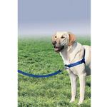 View Image 6 of Easy Walk Nylon Harness by PetSafe - Royal Blue/Navy