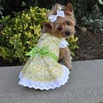 View Image 1 of Emily Yellow Floral and Lace Dog Dress with Matching Leash by Doggie Design