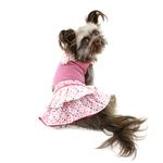 View Image 1 of Eyelet Flower Dog Dress by Dogo
