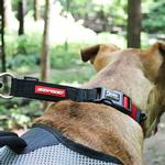 View Image 3 of EzyDog Checkmate Limited-Slip Dog Collar - Red