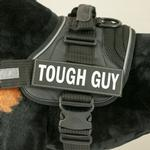 View Image 1 of EzyDog Custom Side Patches for Convert Harness- Tough Guy