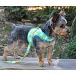 View Image 4 of Fabric Dog Harness with Leash by Doggie Design - Pineapple Luau