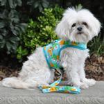 View Image 5 of Fabric Dog Harness with Leash by Doggie Design - Pineapple Luau