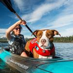 View Image 3 of Float Coat Dog Life Jacket by RuffWear - Sockeye Red