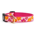 View Image 1 of Flower Power Dog Collar by Up Country