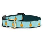 View Image 1 of Pineapple Dog Collar by Up Country