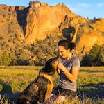 View Image 2 of Front Range Dog Harness by RuffWear - Orange Poppy
