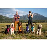 View Image 10 of Front Range Dog Harness by RuffWear - Hibiscus Pink