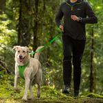 View Image 2 of Front Range Dog Leash by RuffWear - Meadow Green