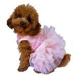 View Image 1 of Fufu Tutu Lace Dog Dress - Pink