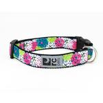 View Image 1 of Full Bloom Adjustable Dog Collar by RC Pet