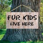 View Image 1 of Fur Kids Live Here Wood Sign