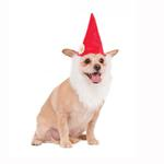 View Image 1 of Garden Gnome Dog Hat With Beard