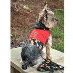 View Image 1 of Gingerbread Harness Vest with Matching Leash by Doggie Design