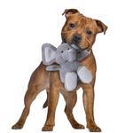 View Image 3 of goDog Checkers Elephant Dog Toy