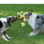 View Image 3 of goDog Dragons Dog Toy - Lime Green