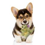 View Image 2 of goDog Dragons Dog Toy - Lime Green