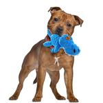 View Image 3 of goDog Gators Dog Toy - Blue/Orange