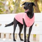 View Image 2 of Gold Paw Fleece Dog Jacket - Coral Pink