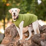 View Image 2 of Gold Paw Fleece Dog Jacket - Moss Green