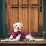 View Image 4 of Gold Paw Fleece Dog Jacket - Red Classic Plaid