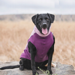View Image 2 of Gold Paw Portland Pullover Dog Jacket - Lilac and Eggplant