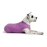 View Image 3 of Gold Paw Sun Shield Dog Shirt - Heather Violet