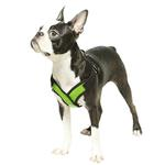 View Image 4 of Gooby Comfort X Step-In Dog Harness - Lime Green