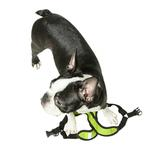 View Image 7 of Gooby Comfort X Step-In Dog Harness - Lime Green