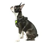View Image 6 of Gooby Comfort X Step-In Dog Harness - Lime Green