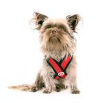 View Image 2 of Gooby Comfort X Step-In Dog Harness - Red