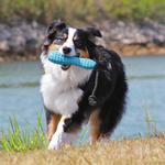 View Image 1 of Gourdo Interactive Dog Toy by RuffWear - Metolius Blue