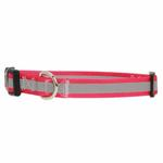 View Image 1 of Guardian Gear Brite Reflective Dog Collar - Raspberry