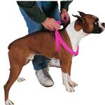 View Image 1 of Guardian Gear Two-Step Dog Harness - Flamingo Pink