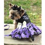 View Image 2 of Halloween Dog Harness Dress by Doggie Design - Too Cute to Spook