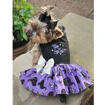 View Image 1 of Halloween Dog Harness Dress by Doggie Design - Too Cute to Spook