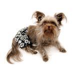 View Image 3 of Hawaiian Print Dog Board Shorts - Black