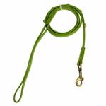 View Image 1 of Hematite Pebbles Dog Leash - Green