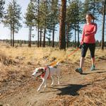 View Image 3 of Hi & Light Dog Harness by RuffWear - Sockeye Red