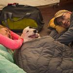 View Image 7 of Highlands Sleeping Bag Dog Bed by RuffWear - Meadow Green