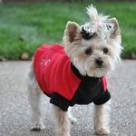 View Image 1 of Highline Fleece Dog Coat by Doggie Design - Red and Black